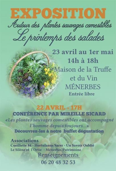 ic_large_w900h600q100_le-printemps-des-salades-1